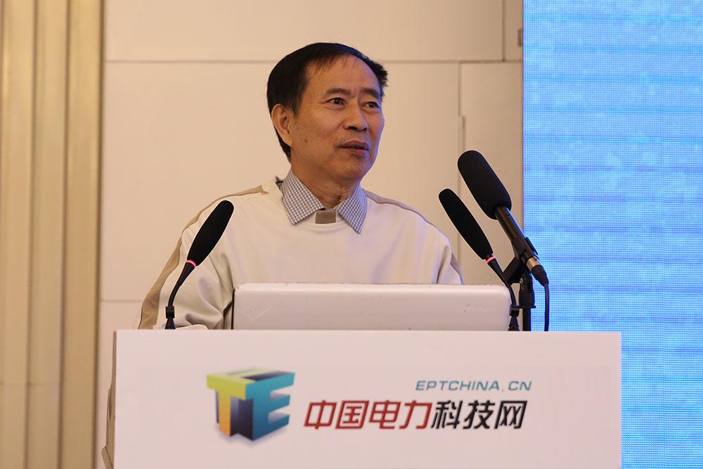 中国电力科技网主任魏毓璞